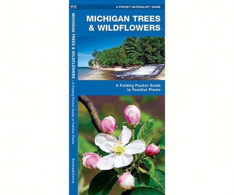 Michigan Trees and Wildflowers