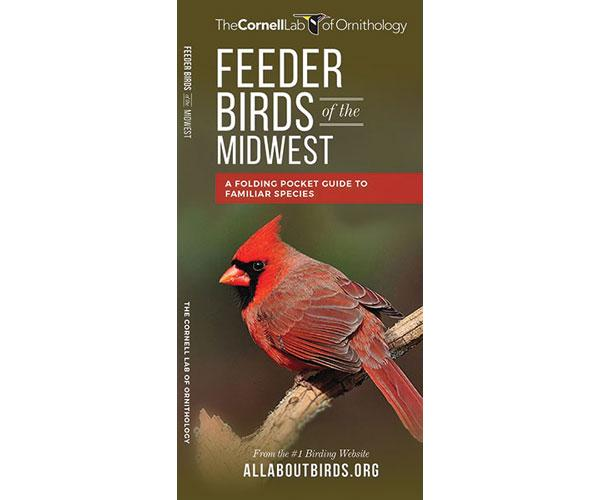 Feeder Birds of the Midwest guide