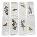 Napkins with monarchs and swallowtail