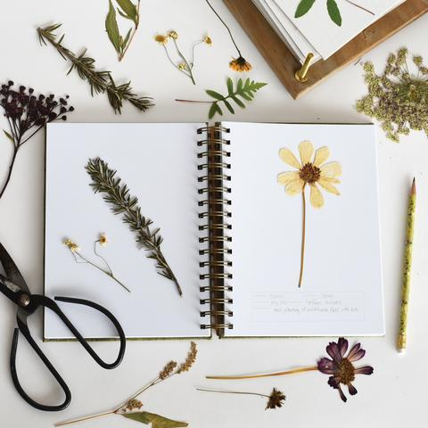 Herbarium Journal form June and December