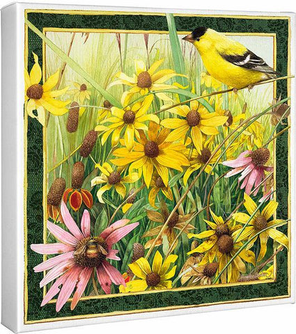 Meadow Paradise – Black-eyed Susans & American Goldfinch