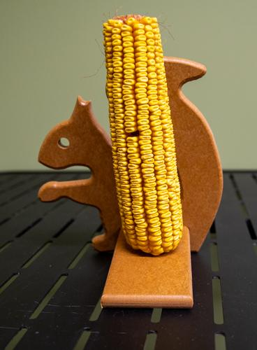 Squirrel feeder with corn - tan