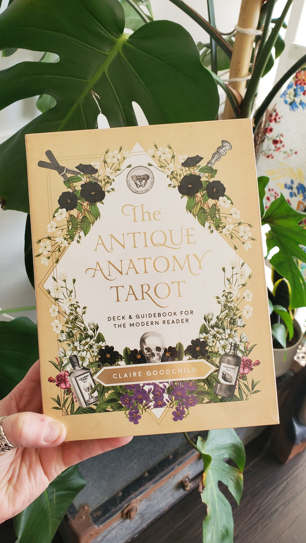 The Antique Anatomy Tarot