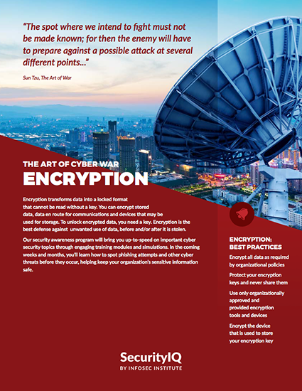 The Art of Cyber War: Encryption