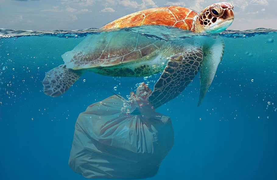 Plastic, if it goes around, it comes around
