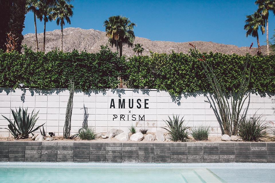 Amuse Society x Prism Boutique Desert House Recap