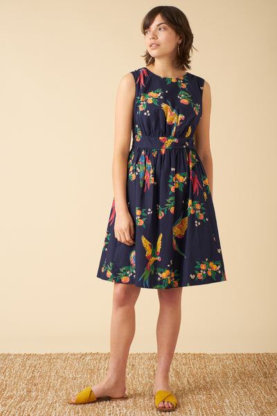 New Lucy Playful Parrots Dress