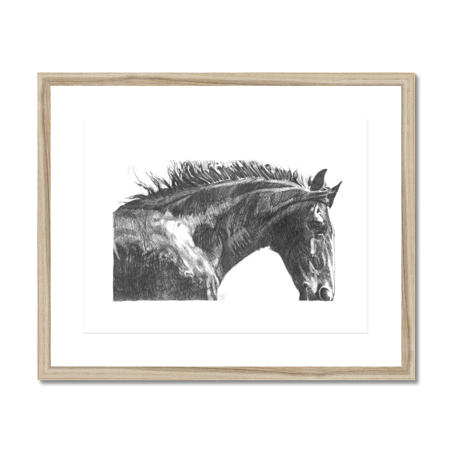 The Gentle Horse - Framed & Mounted Print