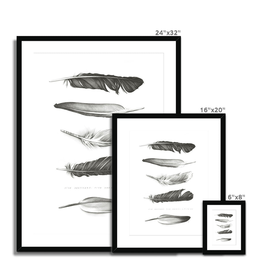 Five Feathers Framed & Mounted Print