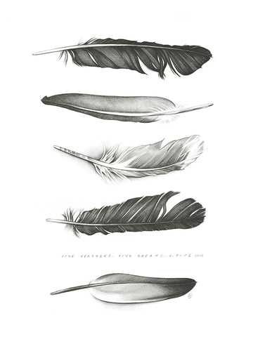 Five Feathers - Fine Art Print