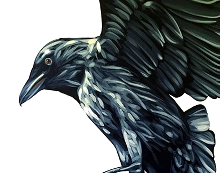 The Harvest Ravens - Canvas