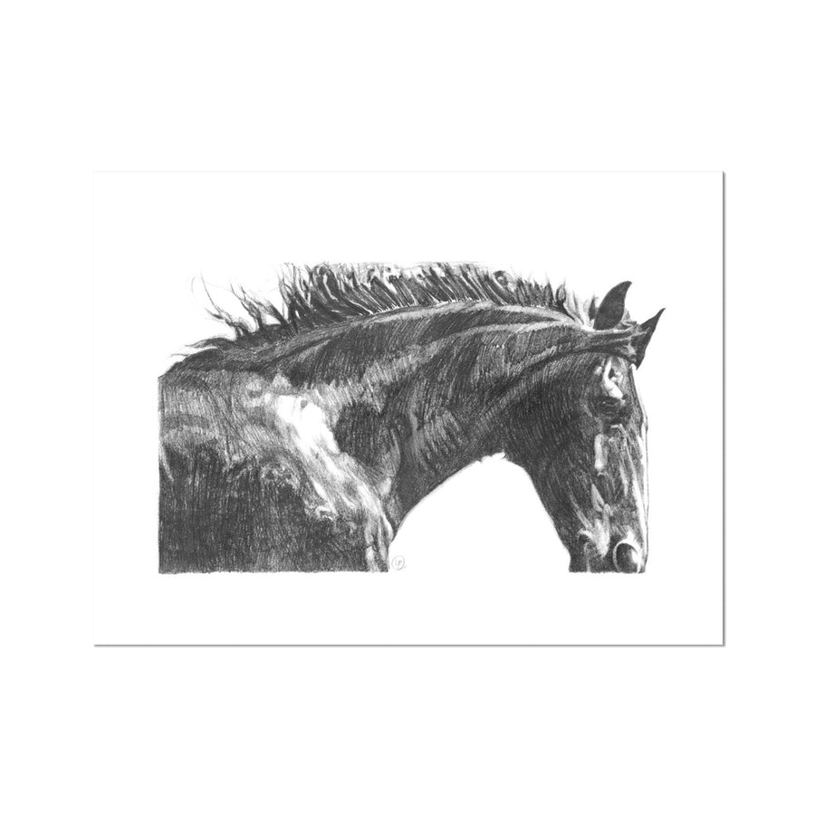 The Gentle Horse - Fine Art Print