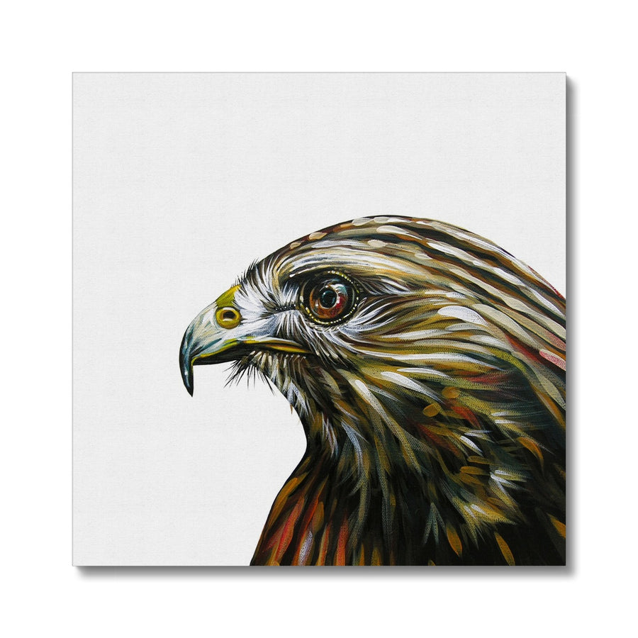 Little Hawk - Canvas