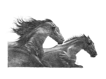 The Wind Horses - Fine Art Print