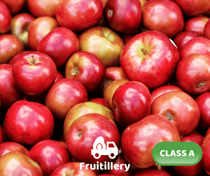 Apple - Fuji (Class A; box of 125 pcs)