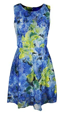 Women's Sleeveless Lace Floral Print Princess Seam Dress