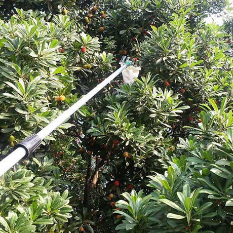 Convenient Horticultural Fruit Picker Pruning Tools