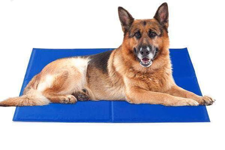 Pressure-Activated Pet Self Cooling Mat Houses, Kennels & Pens