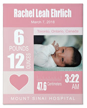 Load image into Gallery viewer, 9x12 pink canvas with personalized newborn baby details with baby picture