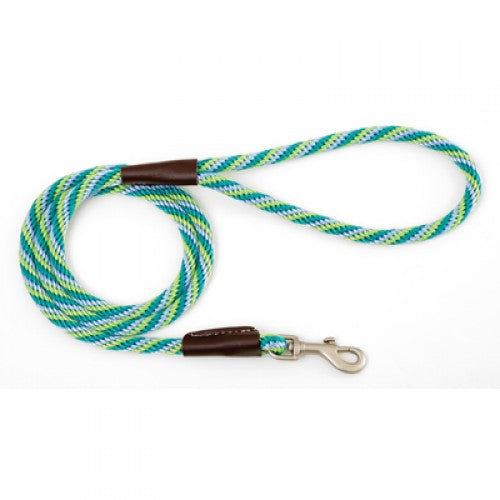 Small/Medium Dog lead - Seafoam