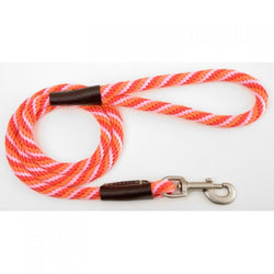 Large Dog lead - Taffy