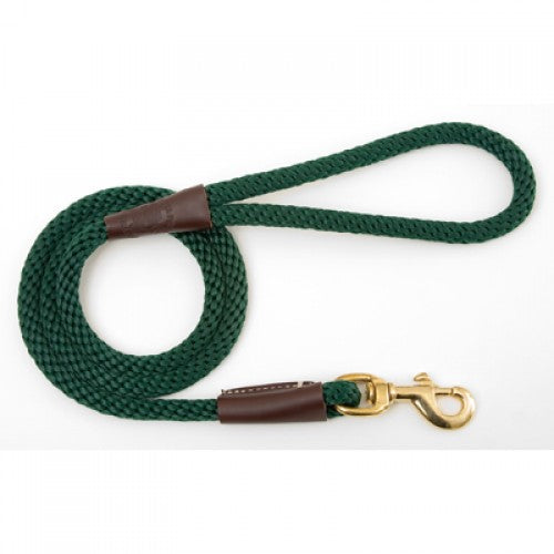 Large Dog lead - Green