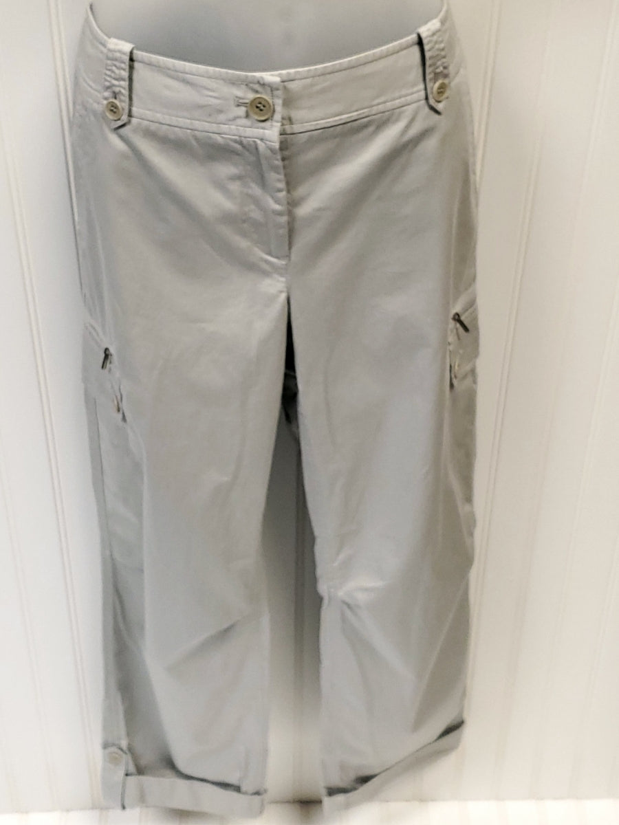 Primary Photo - BRAND: TALBOTS <BR>STYLE: PANTS <BR>COLOR: GREY <BR>SIZE: 6 <BR>OTHER INFO: NEW! ORIGINALLY 79.50 <BR>SKU: 239-23911-67423
