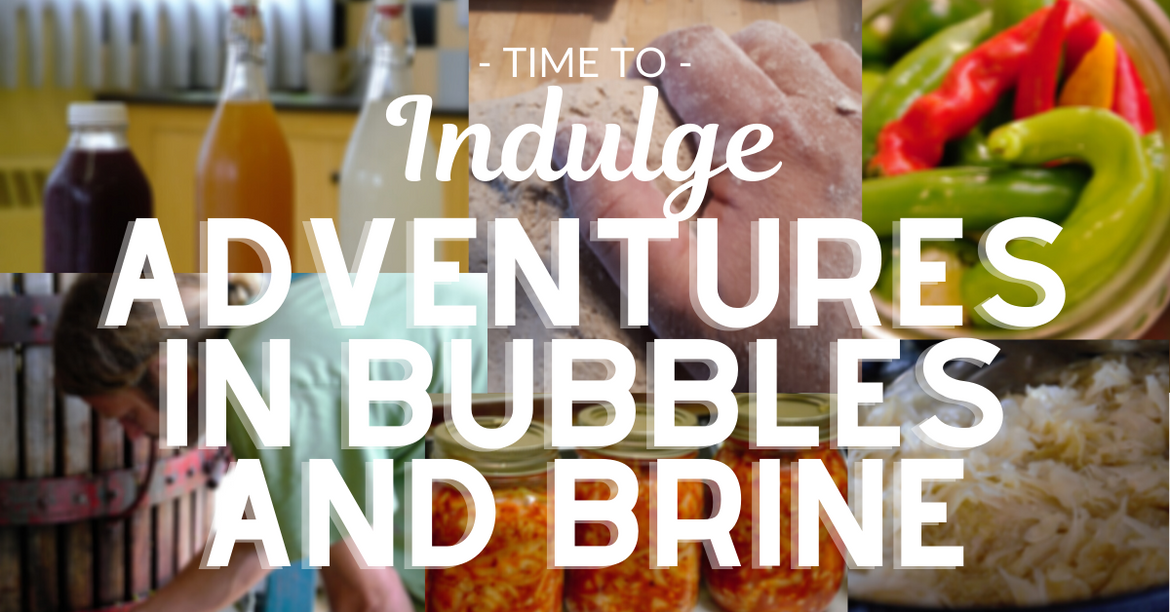 Indulge Featured Book: Adventures in Bubbles and Brine