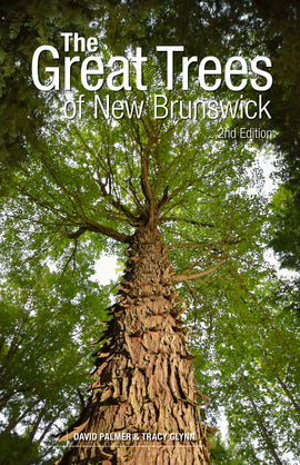 Great Trees of New Brunswick, 2nd Edition