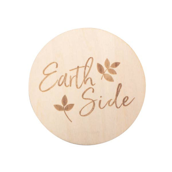 EARTH SIDE MILESTONE DISC