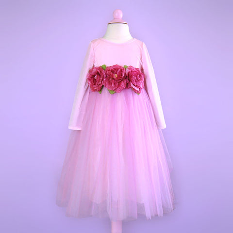 Long Sleeve Light Pink Tulle Gown