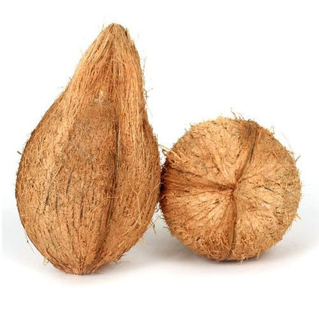 Coconut Medium