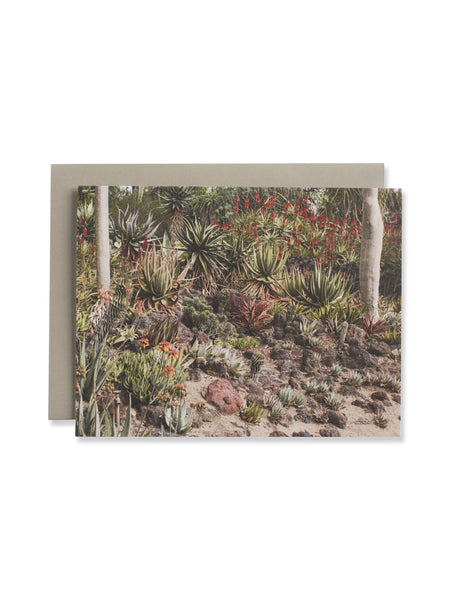California Cactus No. 2 Card