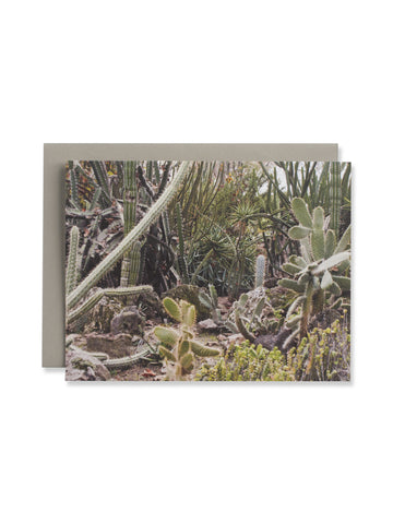 California Cactus No. 3 Card