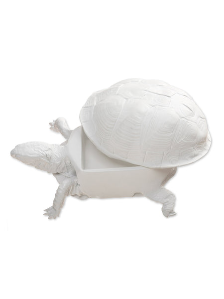 Box Turtle Box (White)