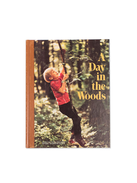 Vintage Book: A Day In The Woods by Ronald M. Fisher