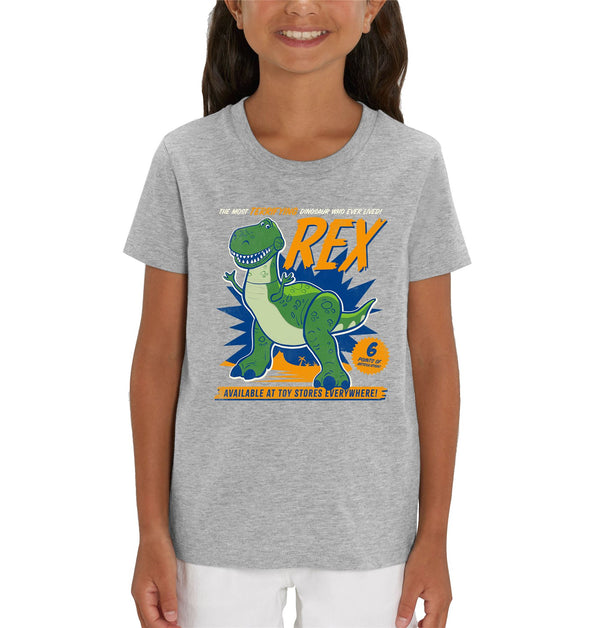 Disney Toy Story 4 The Most Terrifying Rex Children's Unisex Grey T-Shirt