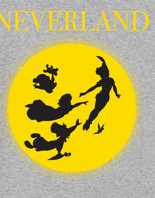 Disney Peter Pan Neverland Children's Unisex Grey T-Shirt