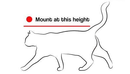 Mount slightly above your cat's height