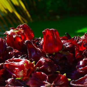 Sorrel (Hibiscus) Flowers Dried