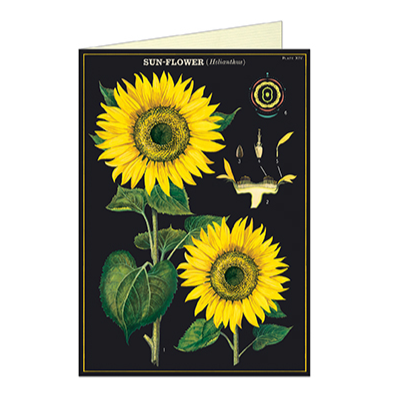 Sunflower Card - Steel Petal Press