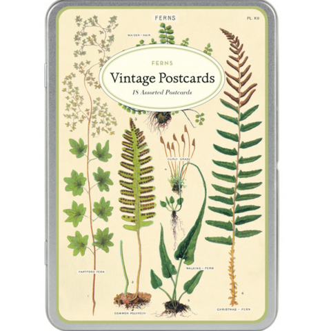 Ferns Vintage Postcard Tin Set - Steel Petal Press