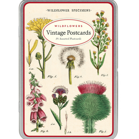 Wildflowers Vintage Postcards Tin Set - Steel Petal Press