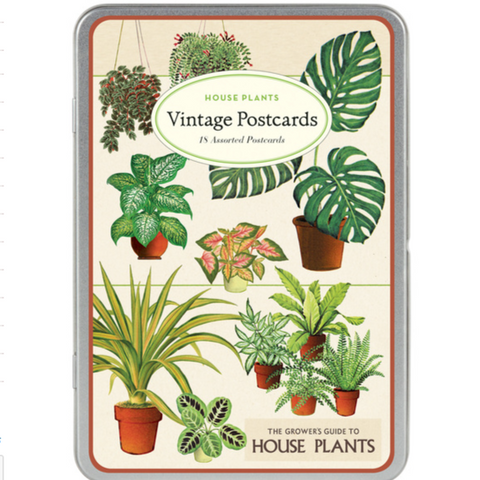 House Plants Vintage Postcards Tin Set - Steel Petal Press