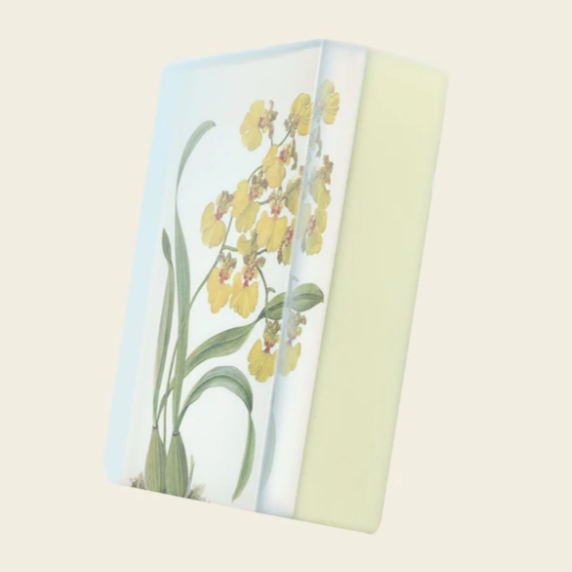 "Plant-Based Body Soap - Yellow Oncidium  ""Orchid Envy"""