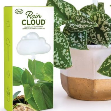Rain Cloud Glass Plant Self Waterer