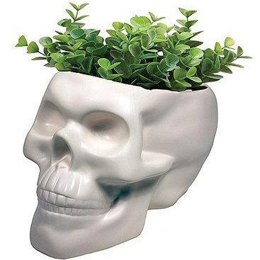 Skull Planter - Steel Petal Press