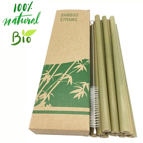 10 Biodegradable Bamboo Washable and Reusable Straws - The Free Wild Soul