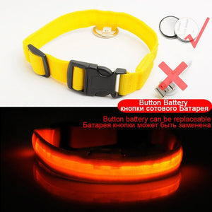USB Charging Led Dog Collar Anti-Lost / Avoid Car Accident Collar For Dogs Dog