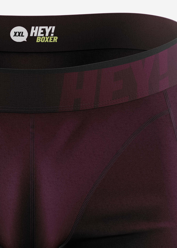 HEYBOXER_HEY!_Boxer_HEY!_Pushboxer_Color_Ruby_Red_DETAIL
